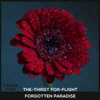 The-Thirst For-Flight - Forgotten Paradise