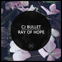 Cj Bullet - Ray Of Hope
