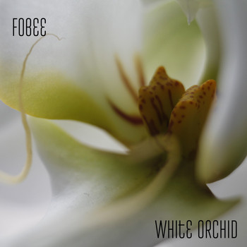 Fobee - White Orchid