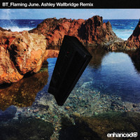 BT - Flaming June (Ashley Wallbridge Remix)