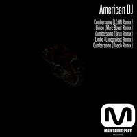 American Dj - The Remixes