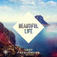 Lost Frequencies feat. Sandro Cavazza - Beautiful Life