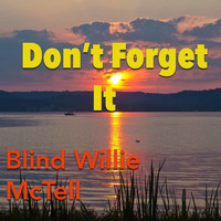 Blind Willie McTell - Don't Forget It