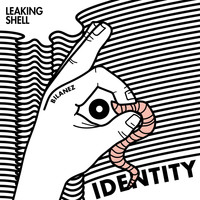 Leaking Shell - Identity
