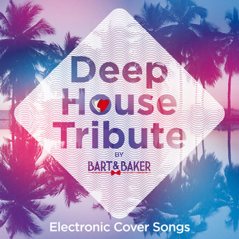 Deep house tribute by bart baker various artists for Deep house music songs