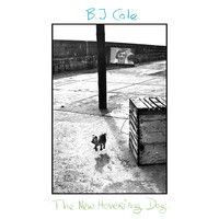 Bj Cole - The New Hovering Dog