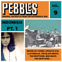 Various Artists - Pebbles Vol. 9, Indonesia Pt. 1, Originals Artifacts from the Psychedelic Era