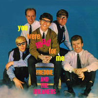 Freddie And The Dreamers - You Were Mad for Me