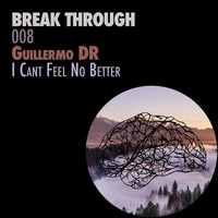 Guillermo DR - I Can't Feel No Better