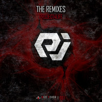 Project4life - The Remixes