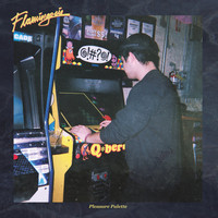 Flamingosis - Pleasure Palette