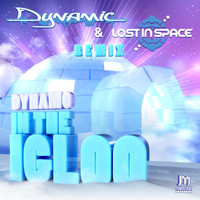 Dynamo - In the Igloo