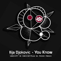 Ilija Djokovic - You Know