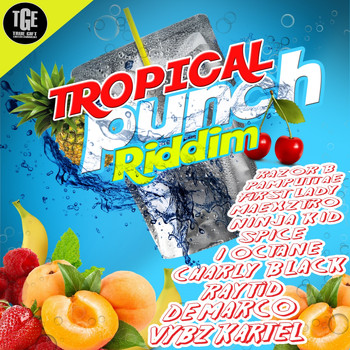 Various Artists - Tropical Punch Riddim