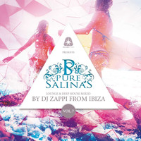 Dj Zappi - Pure Salinas, Vol. 7 (Compiled by DJ Zappi)