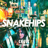 Snakehips feat. ZAYN - Cruel (Explicit)