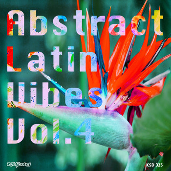 Various Artists - Abstract Latin Vibes, Vol.4