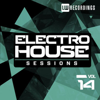 Various Artists - Electro House Sessions, Vol. 14