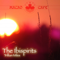 Trillian Miles - The Ibispirits
