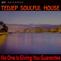 Tedjep Soulful House - No One Is Giving You Guarantee