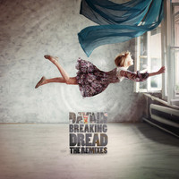 Day Din - Breaking Dread The Remixes