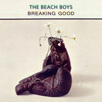 The Beach Boys - Breaking Good