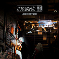 Mesh - Looking Skyward