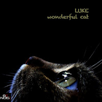 Luke - Wonderful Cat (Extended Version)
