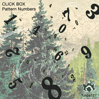 Click Box - Pattern Numbers