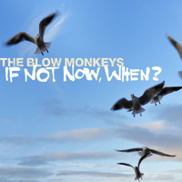 The Blow Monkeys - If Not Now, When?