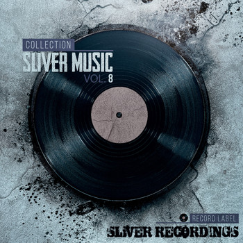 Various Artists - SLiVER Music Collection, Vol.8