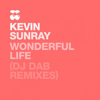 Kevin Sunray - Wonderful Life