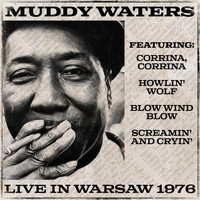 Muddy Waters - Muddy Waters Live in Warsaw 1976