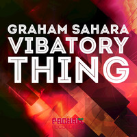 Graham Sahara - Vibatroy Thing