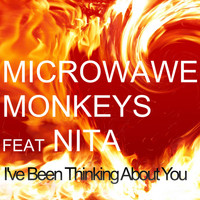 Microwave Monkeys feat. Nita - I've Been Thinking About You