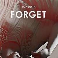 Boxed In - Forget (Radio Edit)