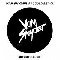Van Snyder - If I Could Be You