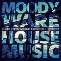DJ Sneak - Moody Warehouse Music Volume 1