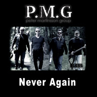 Peter Martinsson Group - Never Again (Radio Edit)
