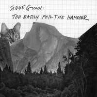 Steve Gunn - Too Early For The Hammer