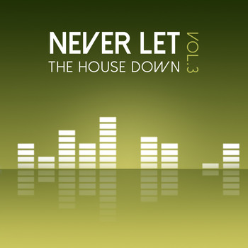 Various Artists - Never Let the House Down, Vol. 3