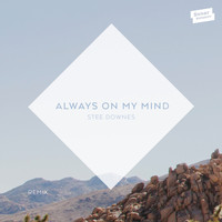Stee Downes - Always On My Mind (Remix)