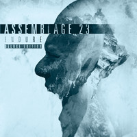 Assemblage 23 - Endure (Deluxe Edition)