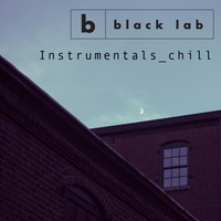 Black Lab - Instrumentals_chill