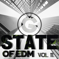 Rich Knochel - State Of EDM, Vol. 11.
