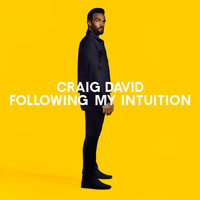 Craig David & Hardwell - No Holding Back