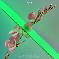 Flume feat. Kai - Never Be Like You (Martin Solveig Remix)