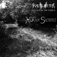 Travis Heeter - Rituals in the Void II: Human Sacrifice