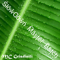 Mc Grisdinili - Slowdown Master Batch
