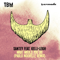 SANTEY feat. Kelli-Leigh - What Would You Do (Pablo Nouvelle Remix)